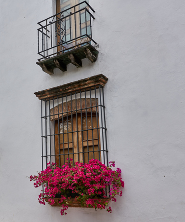 Beautiful Old Window in a White Wall Decorated with Red Flowers Caribbean Flavor Santo Domingo 版權商用圖片