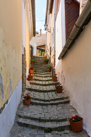 Narrow cobblestone street with steps in Medieval town lined with flower pots 版權商用圖片