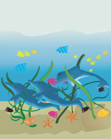 Dolphin Scene Illustration