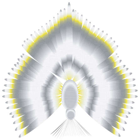 an illustration of a cockatiel hanging upside down and spreading wings and tail feathers against a white background. Stock Photo