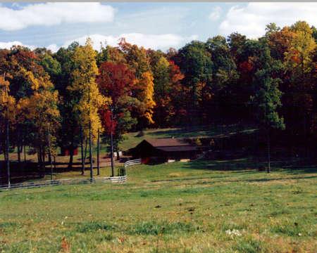 Autumn Country Scenery