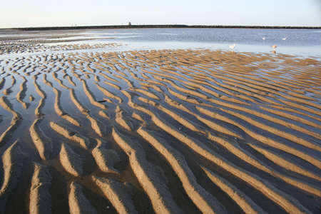ripples in the sand at a beach