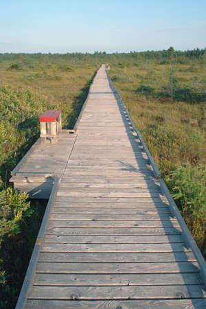 straight path: Endless boardwalk over peat bog Stock Photo