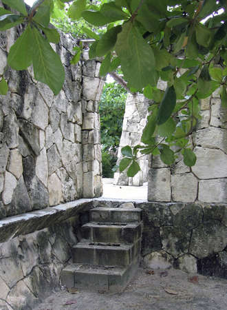 Steps and stone archway at Mexican ruins in jungle Stock Photo - 8746826