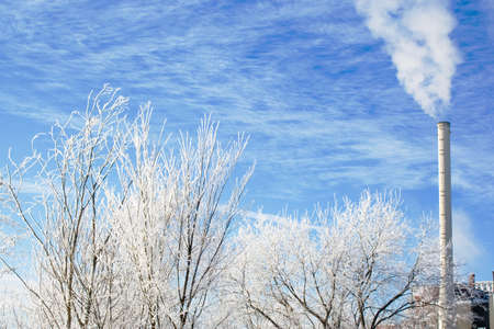 Winter scene with frosted tree branches and industrial smokestack Standard-Bild