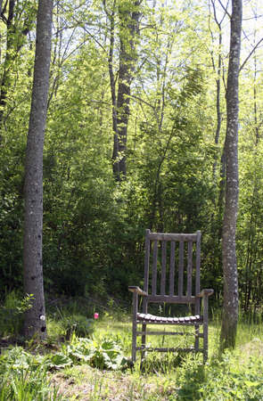 Garden rocking chair in garden near forest