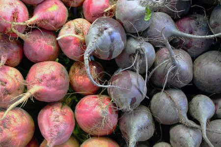 Red and purple beets piled up at farmer's market Standard-Bild