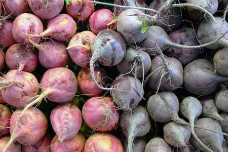 red and purple beets roots up at farmers market