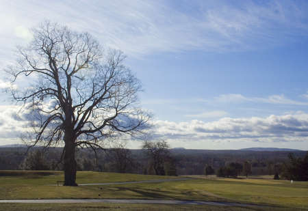Golf course greens come to life in spring