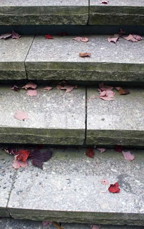 Autumn leaves on steps in park