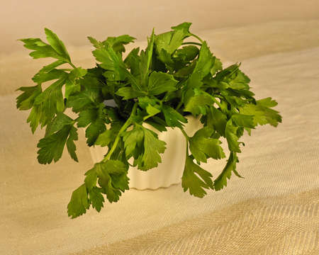 flavorful: A horizontal close up shot of fresh green flat leaf parsley in a white ramekin on a linen cloth, shallow depth of filed