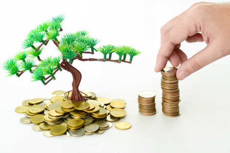 coins: Hand placing coin on tree which growing on coins for sustainable development, business investment and harvesting concept