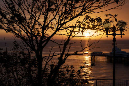 sunup: Sunrise over Llandudno pier. In North Wales. Shot through trees to cause silhouettes.  Stock Photo