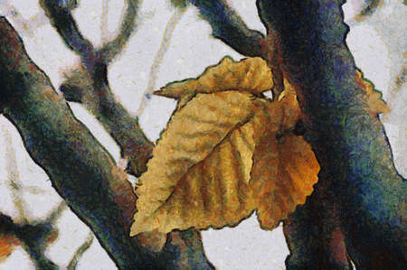 Autumn Leaves. Can be canvas or paper printed. Can be requested with or without artist's signature. Stock Photo - 8232915