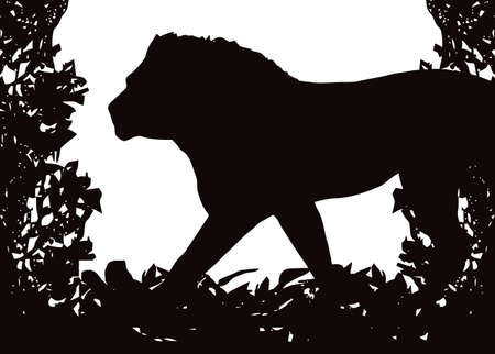 Lion in Isolated bush or jungle frame Stock Vector - 9071050