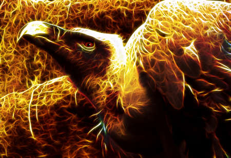 symbolism: Image of Flaming Vulture from hell with spread wings