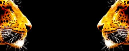 side profile: Banner con due immagini di primo piano al neon del profilo laterale di Leopard faces