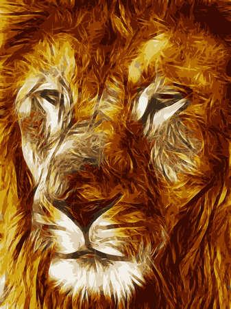 lion face: Close-up picture illustration of Large Lion face Vector