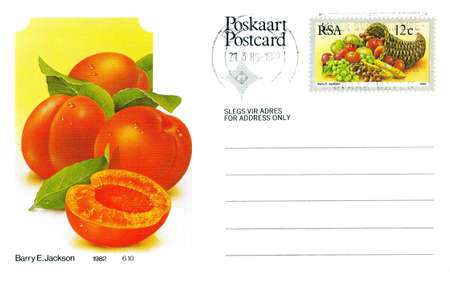 Postcard with apricot painting and printed fruit South African postage stamp, circa 1982.