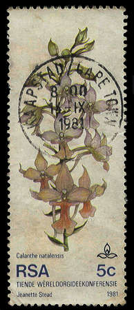 SOUTH AFRICA - CIRCA 1981: A stamp Printed in South Africa of an orchid to commemorate the 10th World Orchid Conference, circa 1981 photo