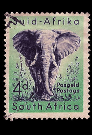 SOUTH AFRICA - CIRCA 1954  A stamp Printed in South Africa shows African Elephant blue on green, bilingually inscribed, circa 1954  Stock Photo