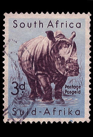 SOUTH AFRICA - CIRCA 1954  A stamp Printed in South Africa shows White Rhinoceros, bilingually inscribed, circa 1954 photo
