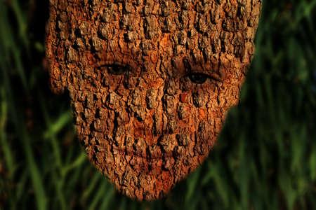 Tree Bark Boy Face Nature Conservation Symbolism