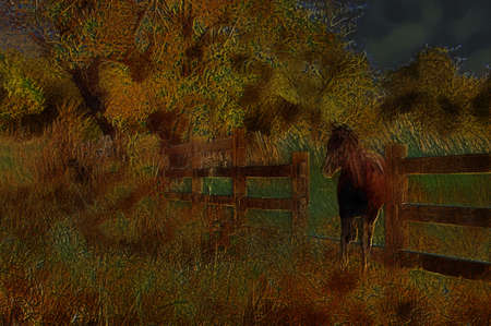 deteriorated: Unique 3D Illustartion of Old Wooden Farm Fence with Horse