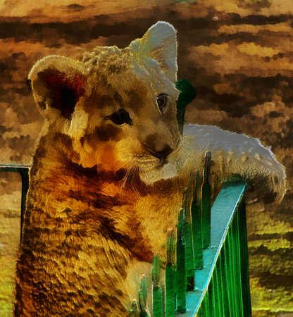 3d lion: Unique 3D Lion Cub Painting on Canvas