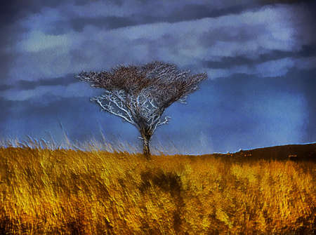 protruding: Unique 3D Bare Winter Tree in Open Graasland Painting on Canvas Stock Photo