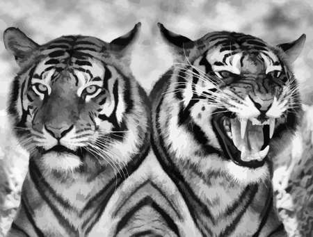 look in mirror: Vector Black and White Cat Expression Opposite Images Illustration