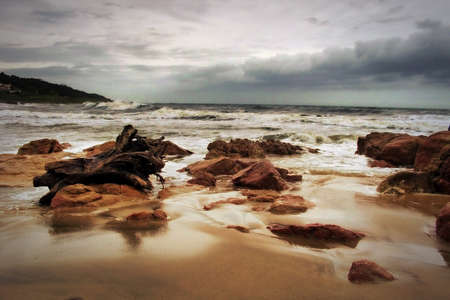 kwazulu natal: Picture of Heavily Overcastted Beachfront with Large Wood Stump Stock Photo
