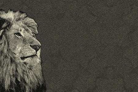 3d lion: 3D Sepia Toned Isolated Lion Face Drawn Card with Copy Space