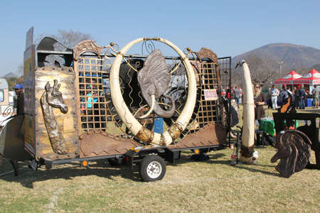 tusks: THABAZIMBI, SOUTH AFRICA - JUNE 28: Large African Artwork with Imitation Elephant Tusks on Display at Wildsfees (Game Festival) on June 28, 2014 in Thabazimbi South Africa.