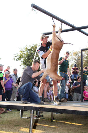 local festivals: THABAZIMBI, SOUTH AFRICA - JUNE 28: Traditional Deer Skinning Contest at Wildsfees (Game Festival) on June 28, 2014 in Thabazimbi South Africa.
