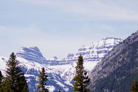 snow covered mountains: Snow covered mountains above the trees Stock Photo