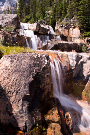 canadian rockies: A fast flowing waterfall in an alpine meadow in the Canadian rockies.