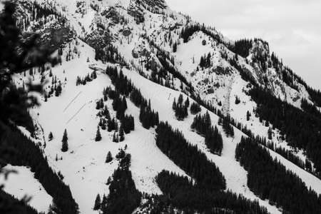 Ski Area: A black and white image of the top of a ski area in the Canadian rockies.
