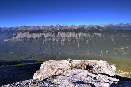 scrambling: A hiker climbing the route up Mount Rundle in Banff national park.
