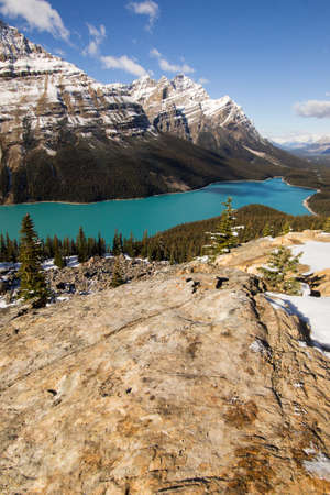 summit lake: Looking down on Peyto lake from the view point near Bow summit. Stock Photo