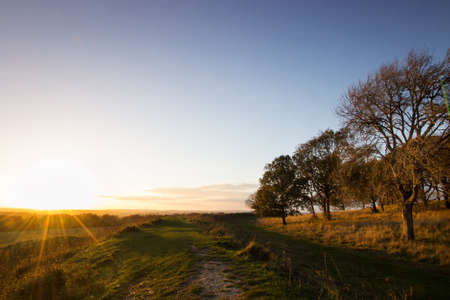 contryside: The last rays light up the top ring of Badbury rings, a Roman hill fort near Wimborne Minster, Dorset Stock Photo
