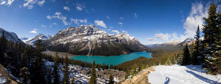 banff national park: A panoramic shot of Peyto lake in Banff national park.