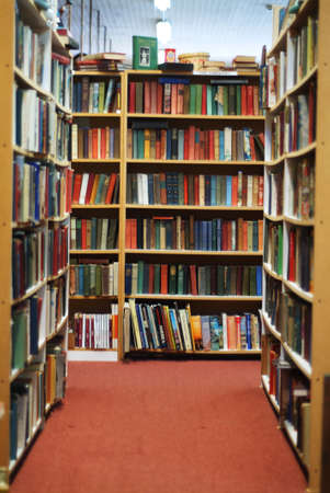volumes: bookshelves in used bookstore