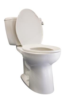 Biała porcelanowa toaleta