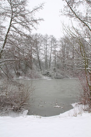 the river naab near schwandorf in winter photo