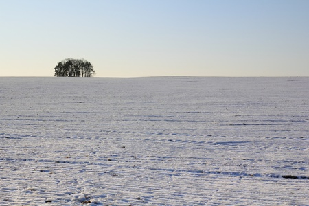 beautiful winter landscape near Schwandorf in bavaria photo