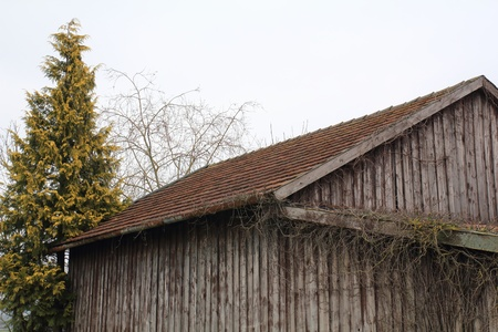 old barn on a cloudy day in spring photo