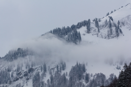 mountains in fog, bavarian mountains in winter photo