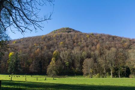 swabian: Hiking next to Bad Urach, Swabian Alb, Baden-Wuerttemberg