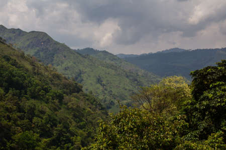 agriculture in the mountains of sri lanka photo